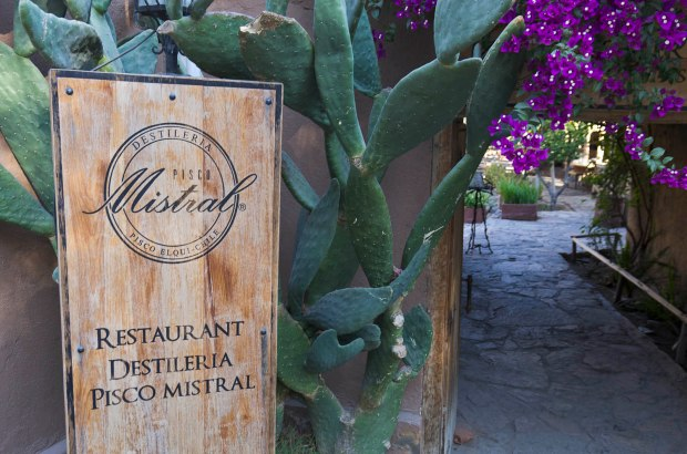 The Mistral distillery in Pisco Elqui, Chile