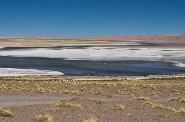 namesake salt deposits at the Salar de Tara