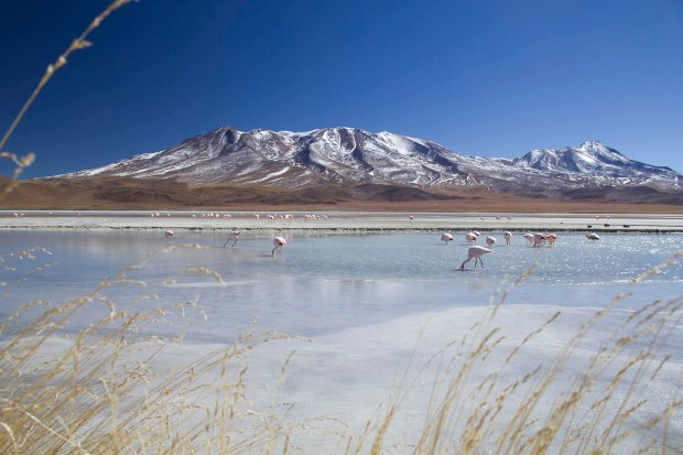 beautiful landscape around the Salar