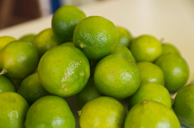 limons are found everywhere in Peru.  Key limes are a bit harder and more expensive to come by in the states