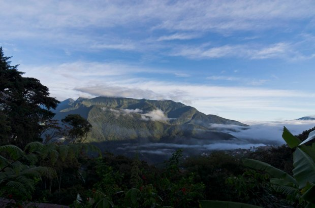 varied landscape-including this beautiful cloudforest just an hour or so out of La Paz
