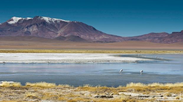 surreal high-altitude lake